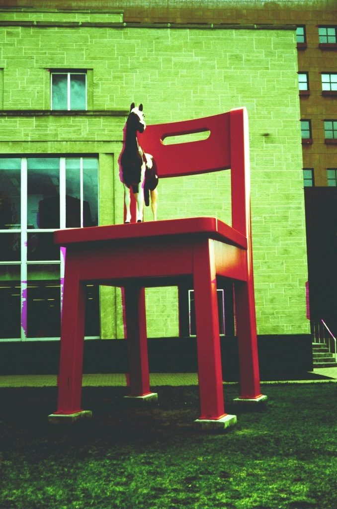 Palimino on a red chair outside the Denver Library